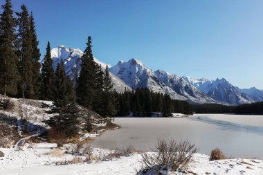 Picturesque view of mountain landscape and high pine tree forest. Winter picture of Canadian nature and frozen lake. Snow lying on peaks and ground. Blue clean sky, sun shining. Travel on christmas