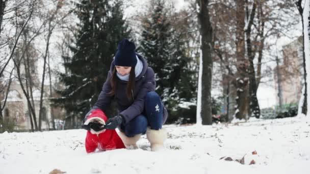 Játék szórakoztató nő mopszli kutya havas parkban. Kutya öltözött Mikulás piros kapucnival, kint a fagyos nap. Tulajdonos-val-a kisállat