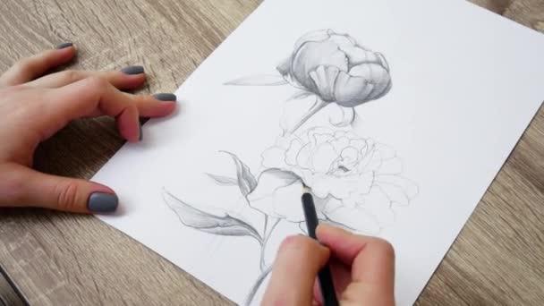 Közeli művész felhívja egy ceruza vázlatot a virágok pünkösdi rózsa