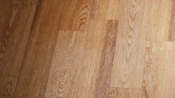 Žena čištění laminátové podlahy v místnosti pomocí mikrovlákna mop, přední pohled