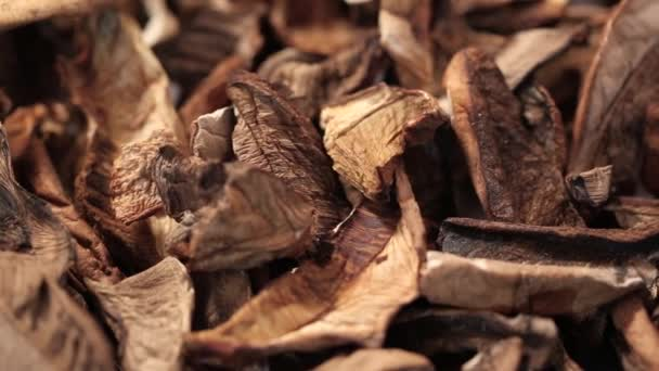 chopped dried mushrooms as background