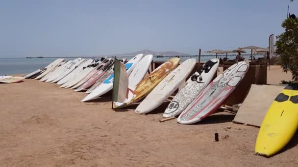 surfboards stand in rows on the sand on the beach by the sea.