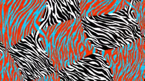 Bezešvé mladé animace psychedelické zvířecí tisk s duotono barvy.Art koláž leopard a zebra vzor kyselé turbulence pozadí.