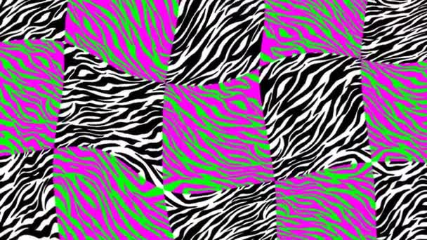 Seamless young animation of psychedelic animal print with duotono colors.Art collage leopard and zebra pattern acid turbulence background.