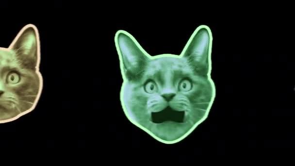 Nahtlose junge Animation von Katzen im Cartoon-Stil mit Duotono-Farben isoliert mit Alpha-Kanal. Stop-Motion Minimal Animal Art Halbton-Stil Hintergrund.