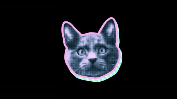 nahtlose junge Animation der Katze im Cartoon-Stil mit Duotono-Farben isoliert mit Alpha-Kanal. Stop-Motion Minimal Animal Art Halbton-Hintergrund in rosa und blau