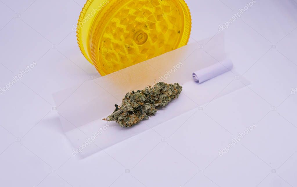 Grind marijuana buds for smoking in the joint. Clear cannabis powder