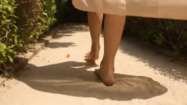Back view of womans feet going to spa room bungalow on exotical tropical island. Smiling blonde girl walks barefoot on white sand near palms on Maldives. Portrair view