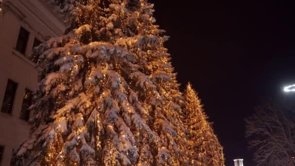 Füzér lámpák a karácsonyfákon. Ünnepi megvilágítás a fenyőfákon szilveszterkor az utcán. Téli éjszaka. Havas lucfenyő ágak. Havazik. Leesett a hó..