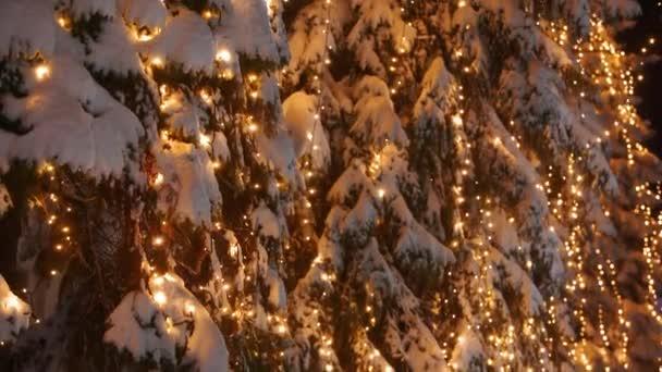 Füzér lámpák a karácsonyfákon. Ünnepi megvilágítás a fenyőfákon szilveszterkor az utcán. Téli éjszaka. Havas lucfenyő ágak. Havazik. Esik a hó. Fényképezőgép megdöntve.
