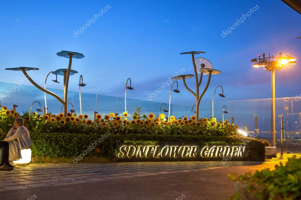 Sunflower Garden with smoking area at Singapore Airport during sunrise