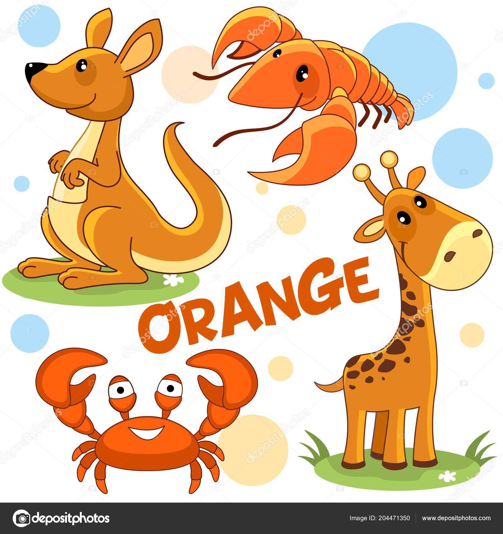 Illustrazione Animali Per Bambini Colorati Una Serie Illustrazioni