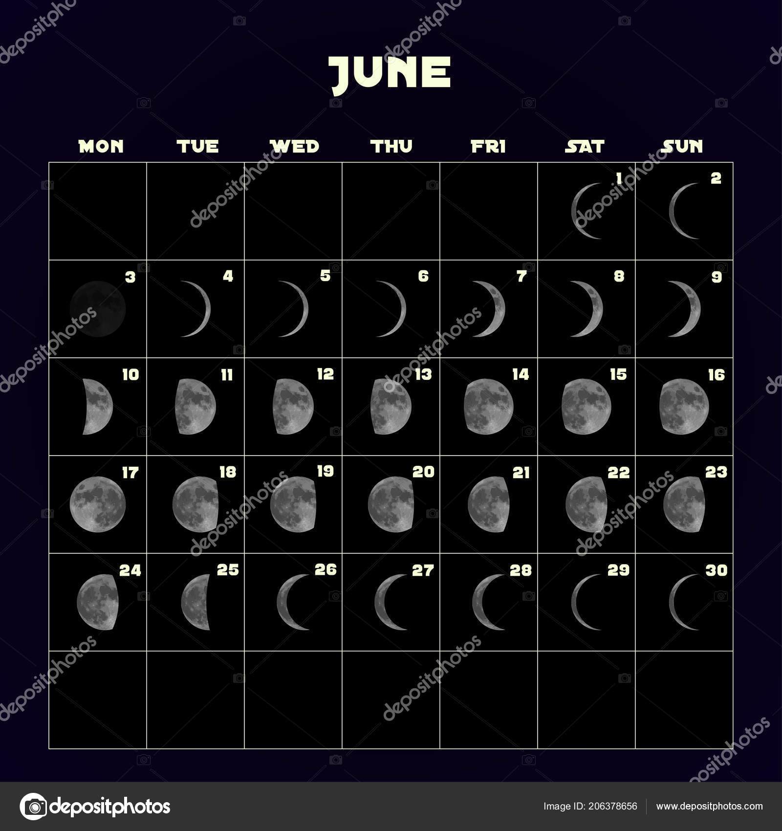 Moon Phases Calendar For 2019 With Realistic Moon June Vector