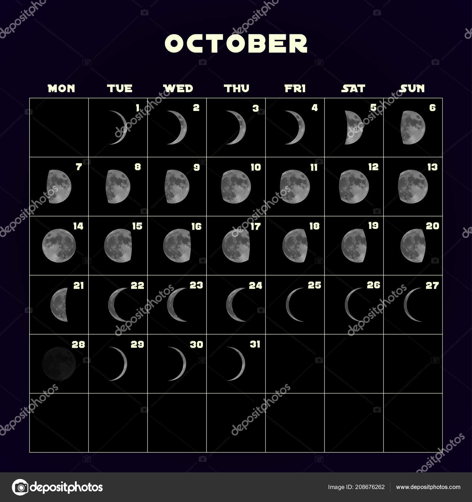 Moon Phases Calendar For 2019 With Realistic October Vector Lunar Diagram Stock
