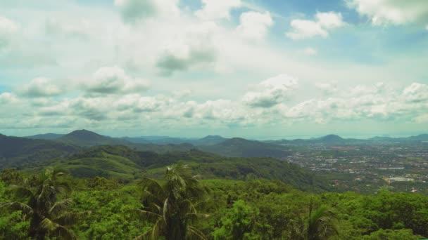 džungle s palmami a akáty v horách. krásné tropické krajiny