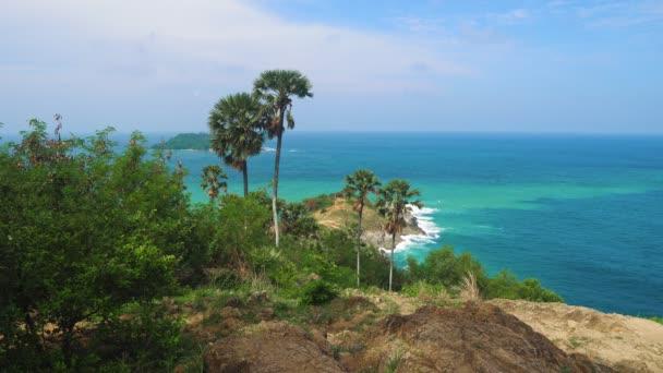tropický ostrov s palmami a mořem