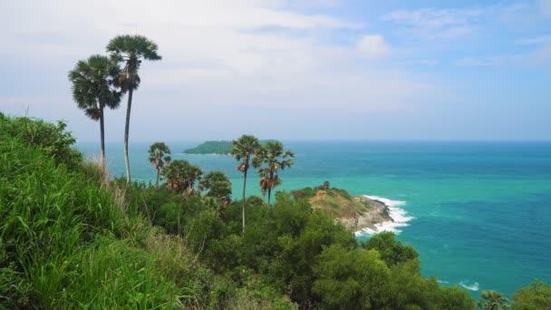 tropická krajina s palmovými stromy a skály na pláži