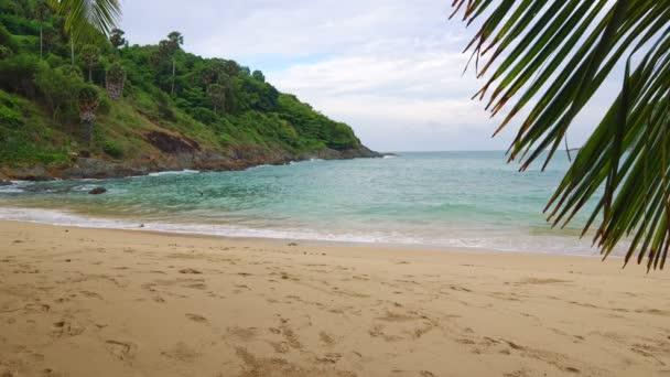 Tropická Pláž s palmami a krásným výhledem