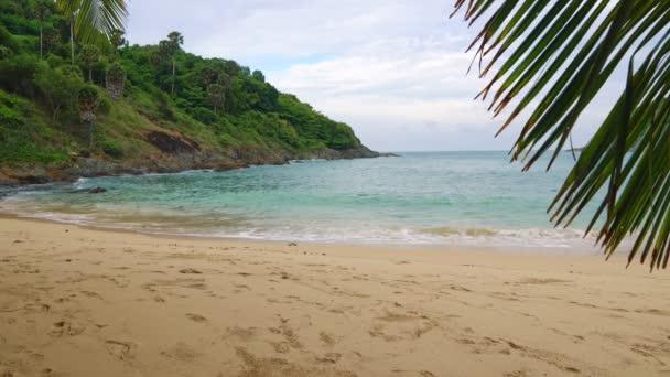 tropické pláže s palmami, odpočinek a cestování na ostrovech