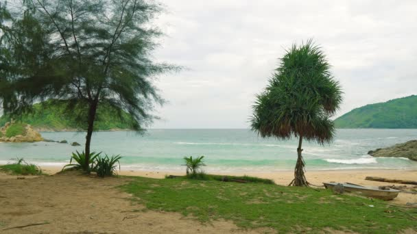 tropical beach with palm trees on the islands. vacation and travel