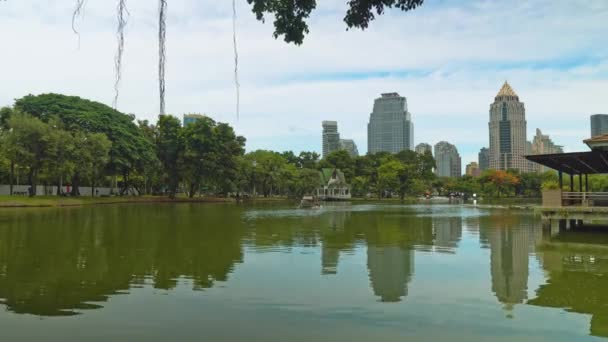 Urban style, trees with a lake in the park overlooking the business district of the big city. corporate buildings with offices and employees.