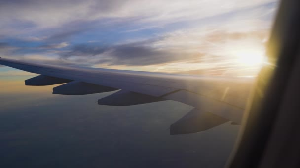 the plane in the sunset. air travel and transportation. passenger airliner