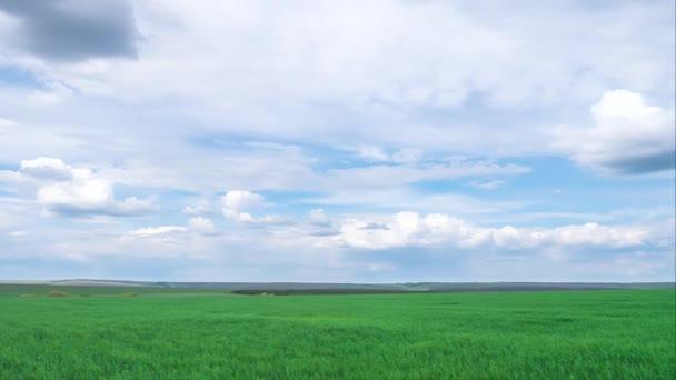 časové osy, zelené jarní pole s mraky. Jarní nálada.