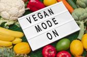 Assorted vegan food on lawn