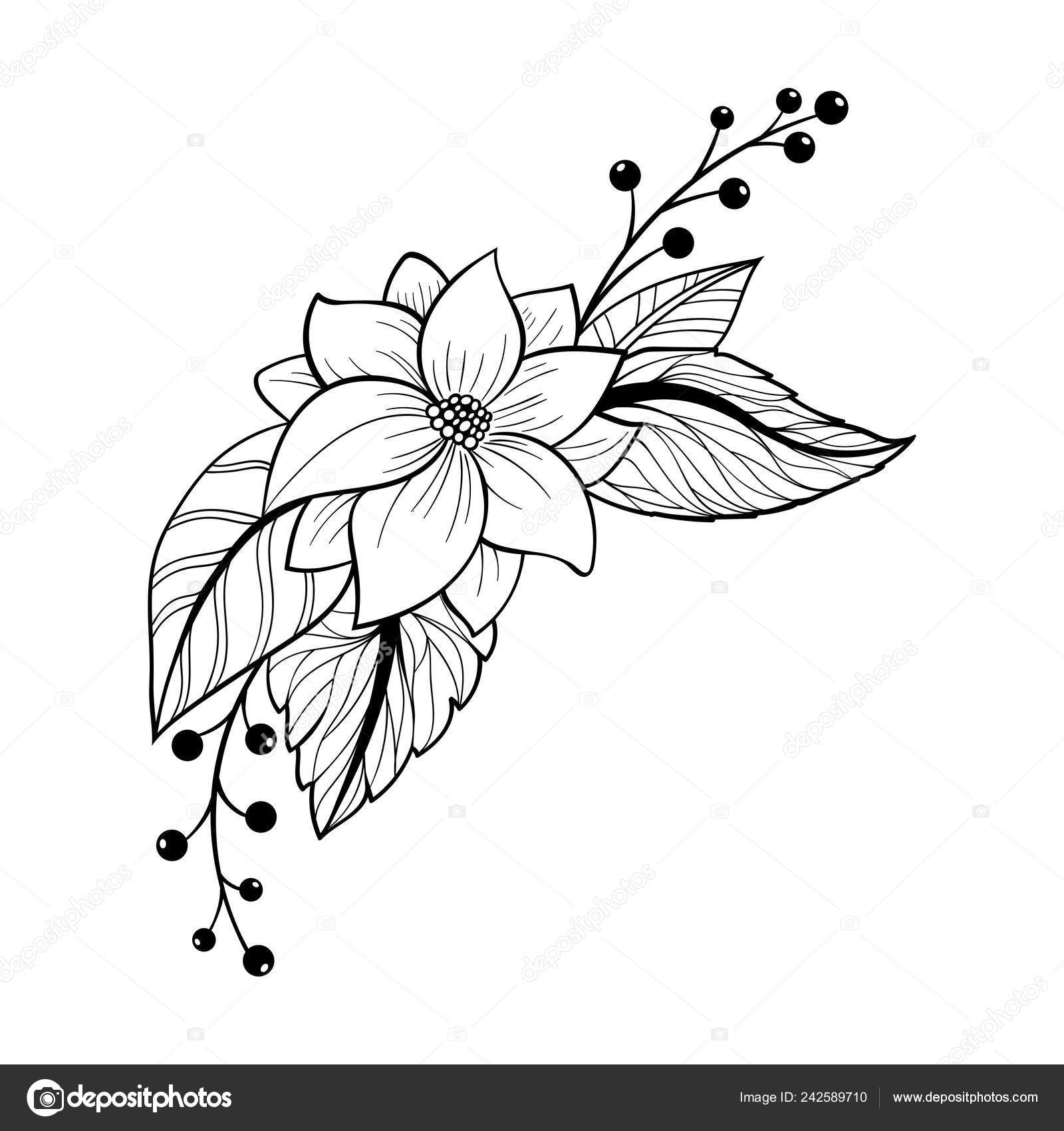 Hand Drawn Floral Doodle Background Decorative Flower Your Design Can Stock Vector C Collibri 242589710