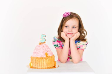 birthday girl five years old with cake. celebration. smash cake decorations, 5