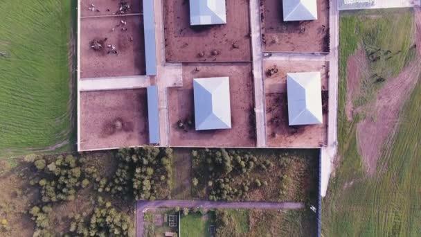 Drone camera střílí střechy moderní oplocený farmy s čtvercovou zvířat ohrad.