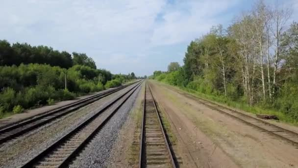 Sunny scenery of empty long railways laying along green line of bushes and trees