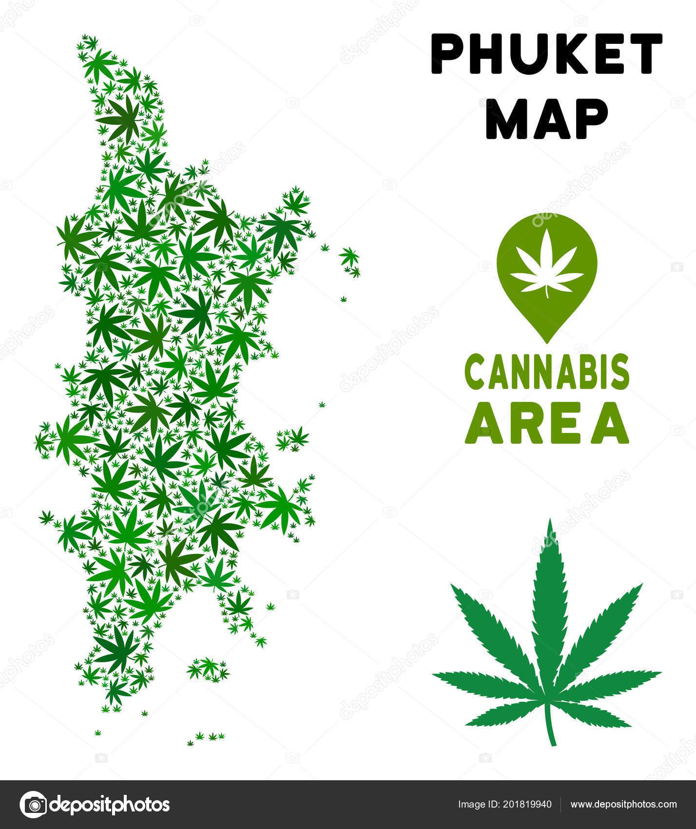 Где купить марихуаны на пхукете как снять интоксикацию марихуаны