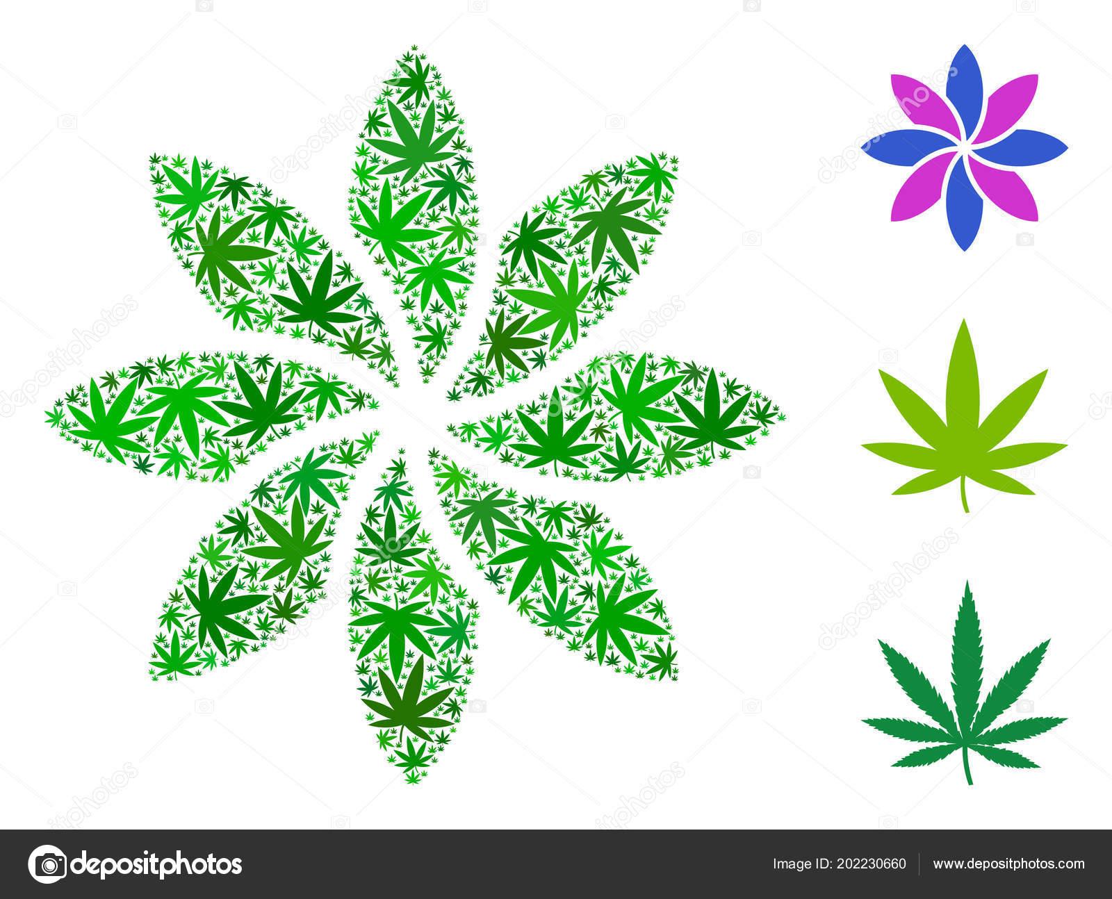 Composition Abstraite Fleur Du Cannabis Image Vectorielle Ahasoft