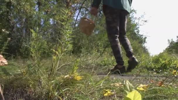 A gomba az erdőben, napsütésben. Fehér gombák növekedését, az erdő-száraz lomb- és zöld fű között. Gombák keres áthaladó két csiperke gomba. Őszi időjárás a erdei út.
