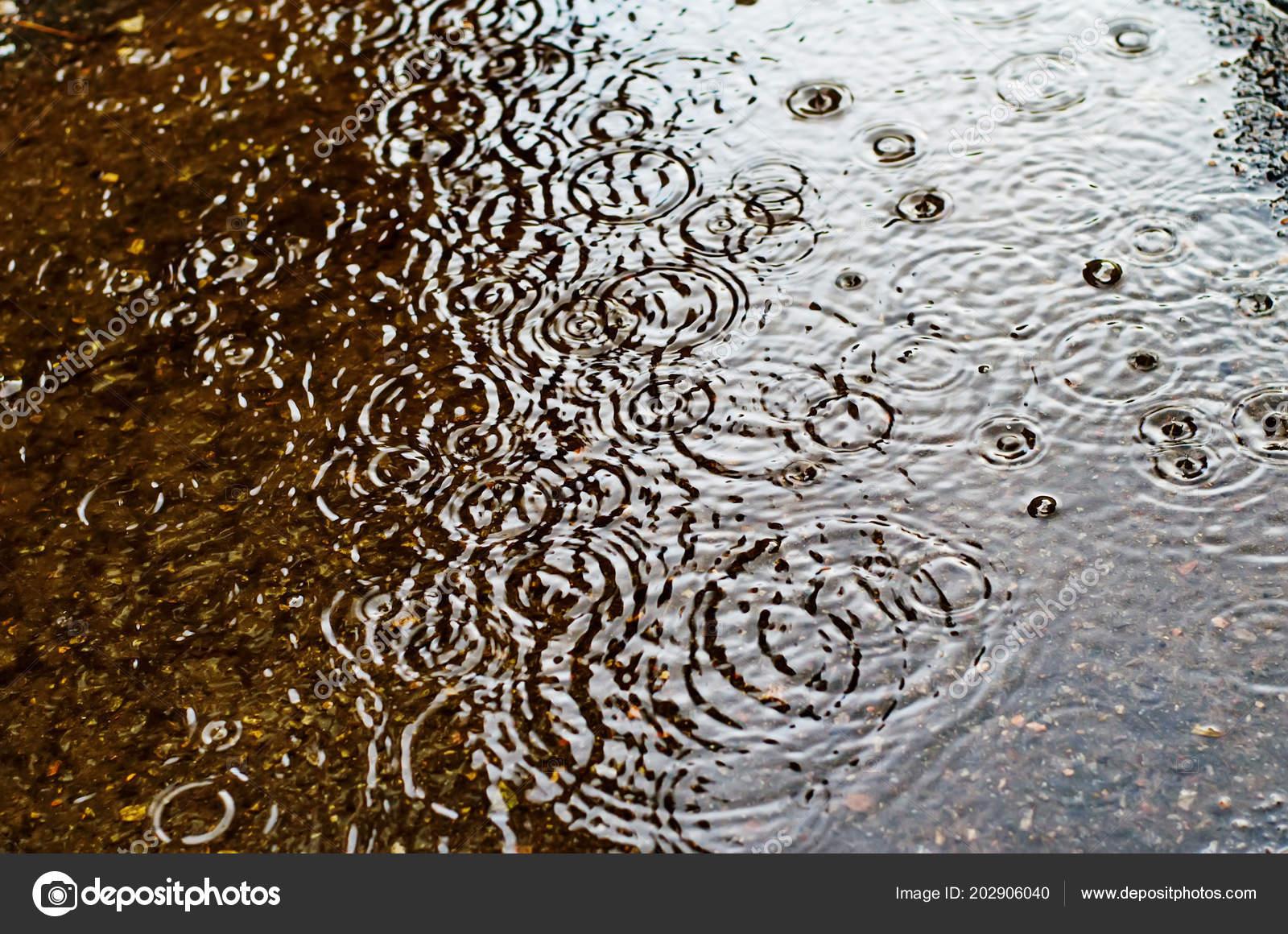 Lluvia Cae Sobre Superficie Camino Calle Día Lluvioso — Fotos de ...