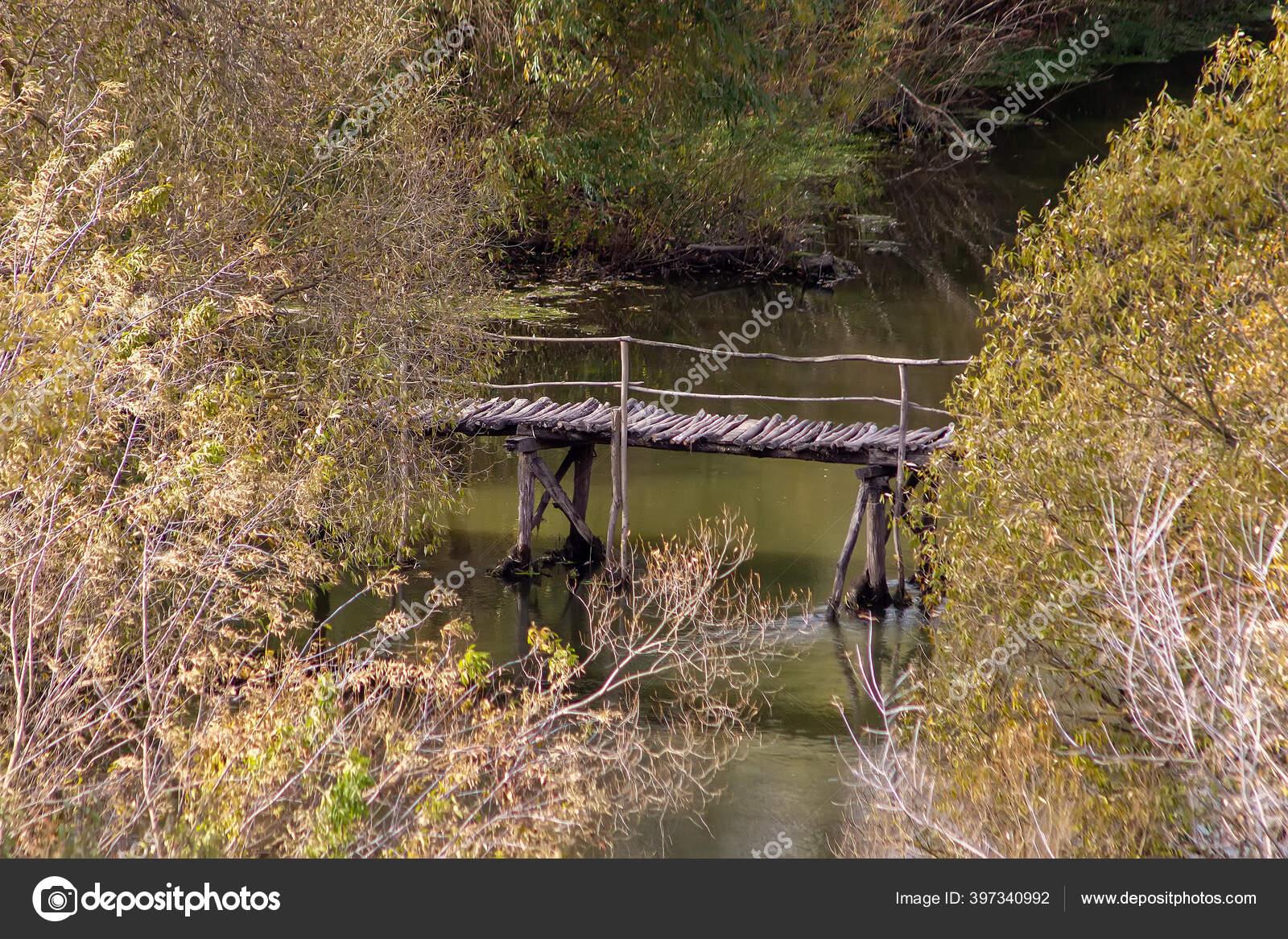 loro Escalera de madera para p/ájaros 78,74 cm New/_Soul puente de balanc/ín para p/ájaros 12 pelda/ños periquitos y cacat/úas