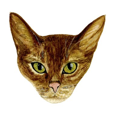 Watercolour cat muzzle hand-painted on a white background. The illustration is well suited for prints on t-shirts, pillows, posters, postcards, stickers, etc