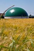 Photo Bio gas plant in a corn field