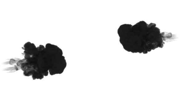 ink dissolves in water on white background with luma matte. 3d render of computer simulation. Black inks inject in water. Two streams 2