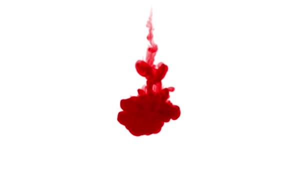 inchiostro rosso si dissolve in acqua su priorità bassa bianca con mascherino luminanza. rendering 3D di simulazione al computer. Gli inchiostri iniettano in acqua. 1