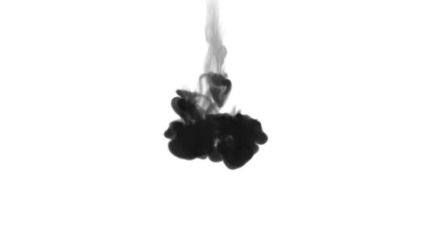 3d render of black ink dissolve in water, simulation of ink injection, vfx effects with luma matte. Black on white 1