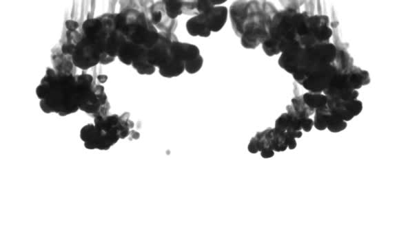 black ink on a white background dissolves in water. beautiful effect modeled on a computer. 3d render with luma matte for use as an alpha channel for visual effects. circular structure 2