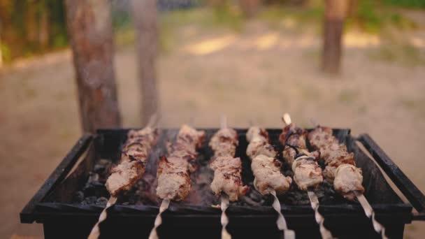 Syrové vaření z kebabu na kovové špíze. Pečené maso vařené při grilování. Tradiční východní pokrm, šš kebab. Gril na dřevěné uhlí a plamen, piknik, pouliční jídlo