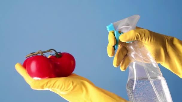 behandschuhte Hände sprühen Desinfektionsflüssigkeit auf Tomaten