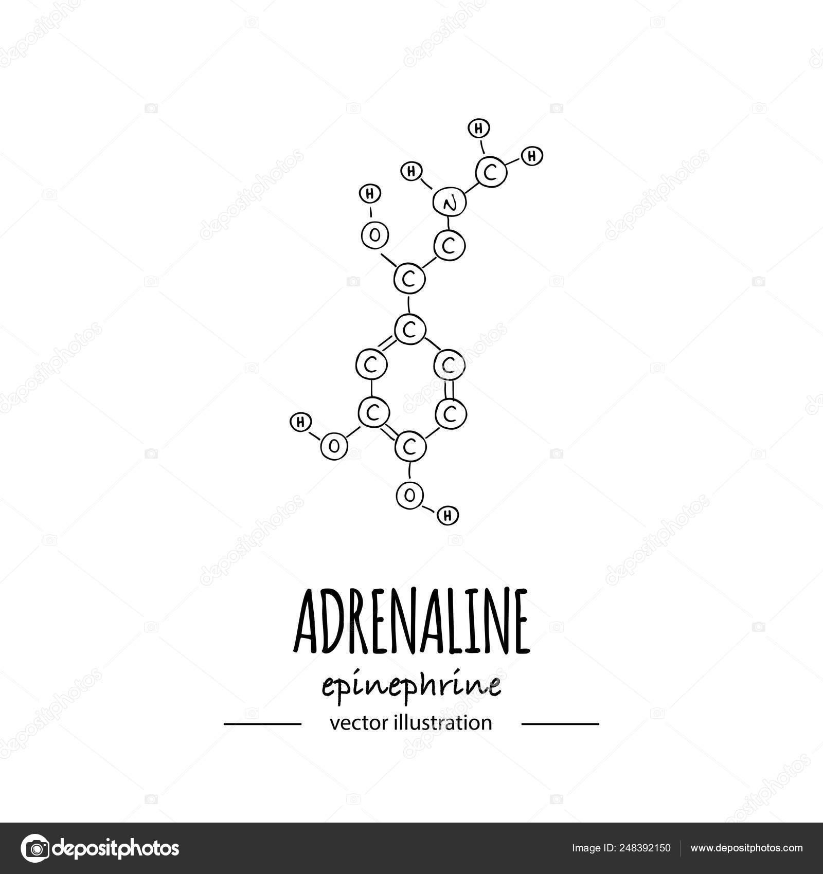 Dibujado A Mano Doodle Icono Fórmula Química De La