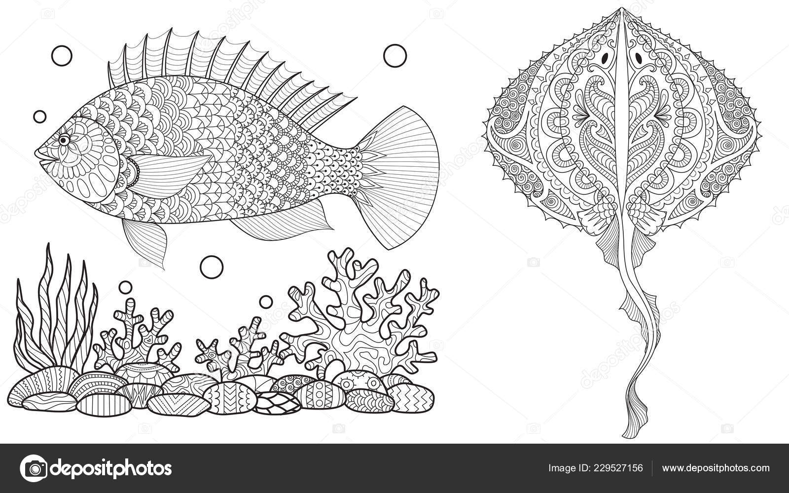 Malvorlagen Für Erwachsene Malbuch Unterwasserwelt Mit Stingray