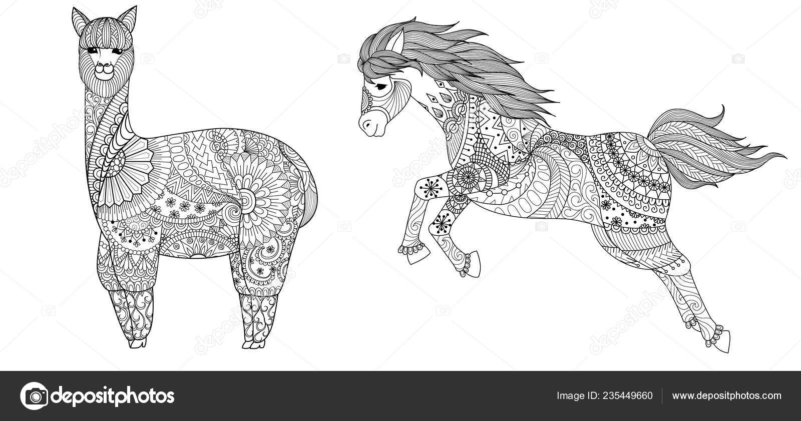 Llamy Horse Coloring Book Coloring Page Colouring Picture ...