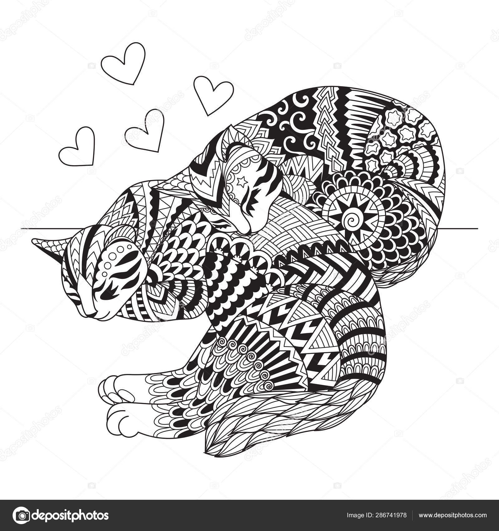 Carino Due Gatti Che Dormono Carte Design Shirt Libro