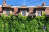 Photo Bucharest view - Historical buildings and vegetation in Cotroceni neighbourhood